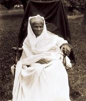 Harriet In Her Last Days