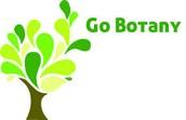 Botany class sale
