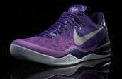 Kobe 8 Court Purple