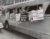 What did the Freedom Riders do?