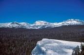http://w3.marietta.edu/~biol/biomes/images/alpine/highsierra