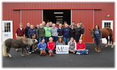 Marley's Mission: Horses Healing Children