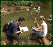 Environmental specialist