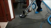 Adam's Carpet Cleaning