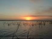 A Sunset at Okeechobee