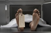 WHAT IS A FORENSIC PATHOLOGIST?