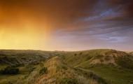 A grassland