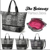 BG6 Getaway Zebra