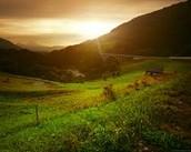 farms grassland