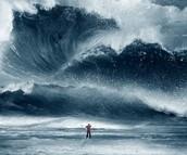 Compare a tsunami and a human