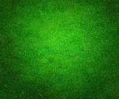 #2 Green