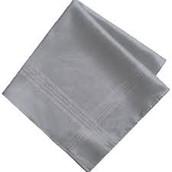 The silver handkerchief