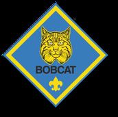 Bobcat badges