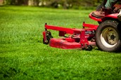 commercial lawn care cleaning