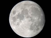 Moons.
