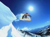 Favorite Winter Activity
