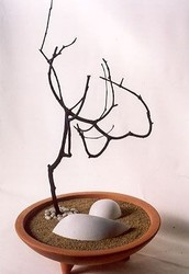 Elements of a Zen Garden