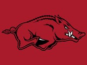 #3 North Arkansas College