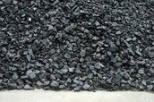 Participate in the Coal Dig!