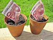 Raha ei kasva nagu taimed