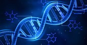 What is Recombinant DNA?