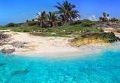 A Beach in the Caribbean