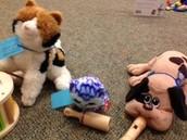 Stuffed Animal Music Time!