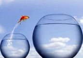 Develop Immense Self Belief