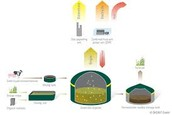 More more biogas production