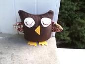Owls-my specialty