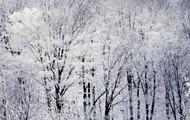 Snow, Sleet, or Hail