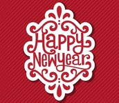 С Новым 2016 годом, любимые!