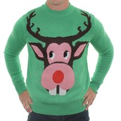 Rudolph the ugly reindeer