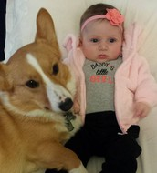 This is our sweet girl, Elyse, and our adorable dog, Mosby! They are the light of our lives!