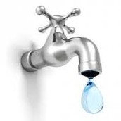 What can we do to conserve water?