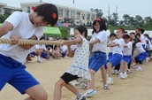 Japan's Sports Festival