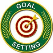 Establishing and monitoring goals for success