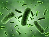 Bacteria dies and new bacteria becomes resistant to that antibiotic