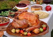 Not Sure What To or How To Cook a Thanksgiving Dinner?