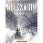 Blizzard! : the storm that changed America (CALL #974.7 MUR)