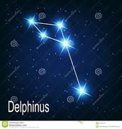 The Myth Behind Delphinus