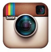 Favorite Social Media Platform