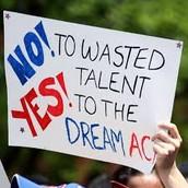 Dream Act.