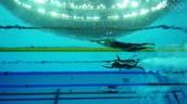 Women Swimming 100m Freestyle