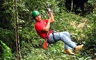 #7 Top Tourist Activity: Zipline Into The Rainforest!