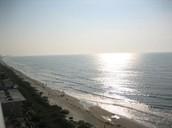 Sweet Ocean View