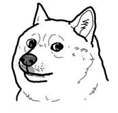 Dogo T Jr.