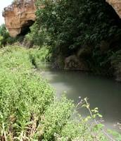 Río Quípar