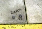 Roselle passed away a year after. They have a foundation for her now.