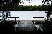 Staring Lake Field Trip